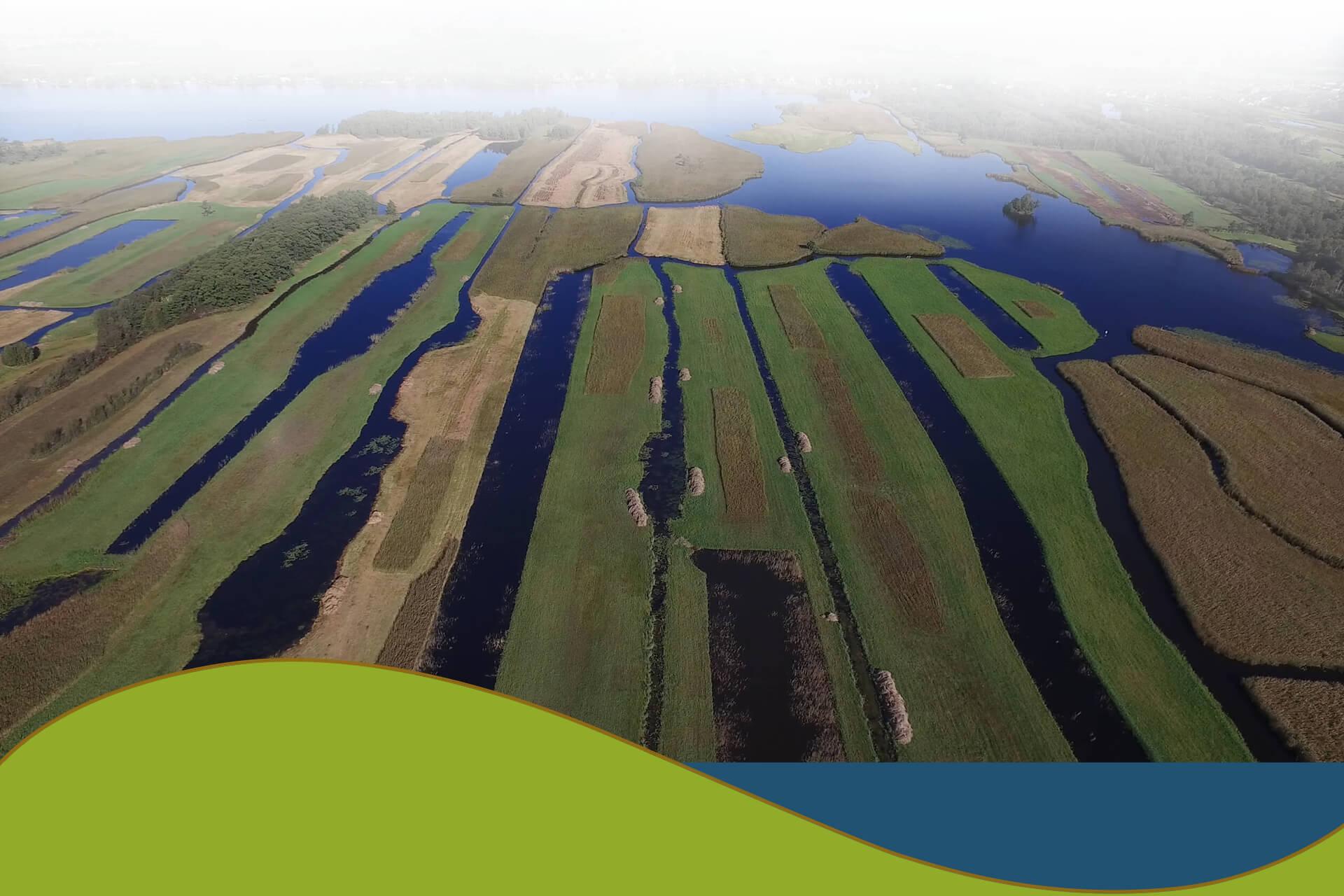 Natuurherstel knoop waterbouw